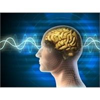 Beyni Daha İyi Çalıştıracak 10 Öneri