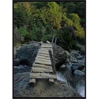 Köprüde Yapayalnız