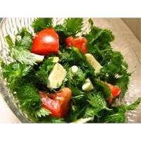 Pratik Isırgan Otlu Salata