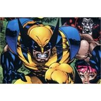 Wolverine Müzik Piyasasında