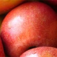 Elmayı Her Gün Ye Kanserden Korun!