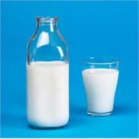 Süt Ve Faydaları