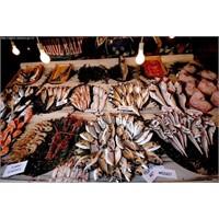 Hangi Ayda Hangi Balık Tüketilmeli