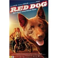 Bu Filmi Mutlaka İzleyin: Kızıl Köpek
