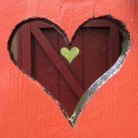 Kapınızın Önünde Aşk Var Mı?