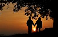 7 Günde Sevgili Garanti