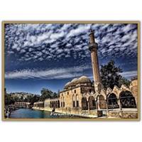 Şanlıurfa Balıklı Göl - Halilürrahman Camii