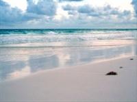 Denizin Maviliği