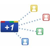 Türkçe Google +1 Buton Kodu