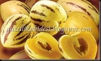 Mucize Meyve Pepino