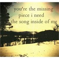 Bir Çeşit Aşk Ve Şarkısı