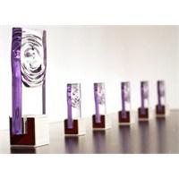 Fifi Ödülleri 2013
