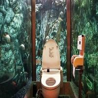 Manzaralı İlginç Tuvaletler