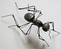 Solucan, Trojan Ve Virüslere Karşı Karıncalar Geli