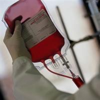 Kan Yapıcı Bu Özel Tarif Kansızlık Çekenlere İlaç