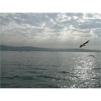 Bir Yudum İstanbul..