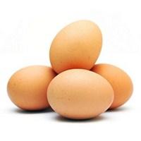 Kalp Sağlığınız İçin Yumurtayı Doğru Tüketin