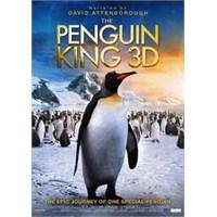 The Penguin King : Adını Rex Koydum