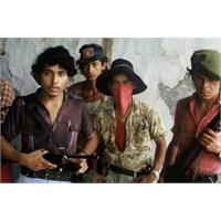 Fotomuhabirliğin 40 Yılı: Sipahi Kuşağı