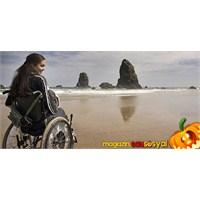 Sakarya'da Kaç Engelli Vatandaşımız Var?