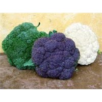 Brokoli Neden Yenmeli