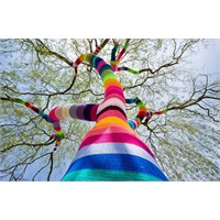 """Renkli Sokak Sanatı """"Yarn Bombing!"""""""