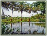 Kerala -   bhargava Bhumi  - Tanrının Memleketi