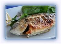 Hangi Mevsimde Hangi Balık Yenilmeli