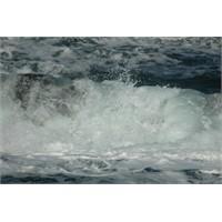 Hayatta Kalmak İçin Deniz Suyu İçmek