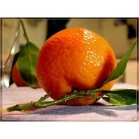 Vitamin Deposu Mandalinanın Faydaları