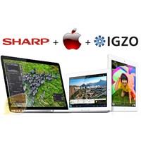 Apple, İgzo Teknolojisini Kullanacak Mı?