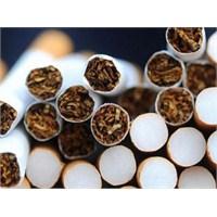 Sigara Filtrelerine Dikkat