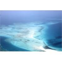 Baharat Ve Kumsalları İle Ünlü Zanzibar Adası