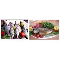 Dalyan'da Güzel Bir balık Restoranı