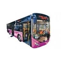 Hey İstanbullu Otobüs Bu Renk Olur Mu :)