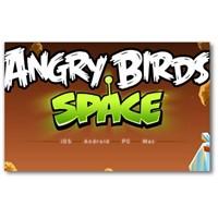 Angry Bird Space Oyunu Cebinizi Şenlendirecek
