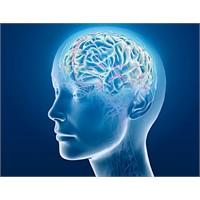 Beynimizle İlgili Büyük Keşif