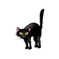 Kara Kedi Neden Uğursuzdur