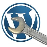 Wordpress Yazı Başlıklarını Kısaltma