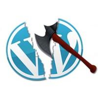 Wordpress Te Güvenlik Açığı
