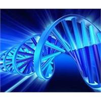 Sentetik Biyolojide Dünyayla Yarışıyoruz!