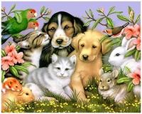 Evcil Hayvan Besleyenlere Müjde !