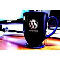 Wordpress Android Uygulaması Ve Mobil Blogculuk