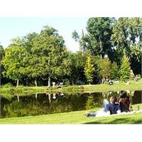 Amsterdam Gezilecek Yerler - Vondelpark