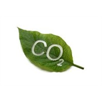 Co2'den Yakıt