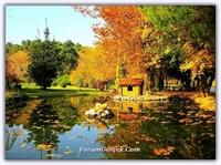Hüzün Mevsimi Sonbahar - Fotoğraflarla