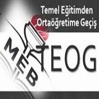 Teog Sınavı Türkçe Sorularına Genel Bir Bakış