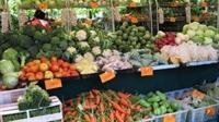 Organik Ürünleri Nereden Satın Alabilirsiniz?