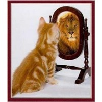 Ayna ...