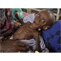 Somalili Mihag'ın Yaşama Şansı Var Mı?